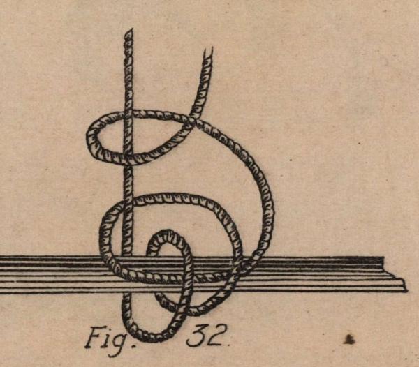 De Jonghe (1912, fig. 32)