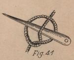 De Jonghe (1912, fig. 41)