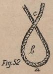 De Jonghe (1912, fig. 52)
