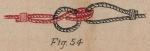 De Jonghe (1912, fig. 54)