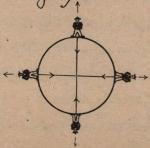De Jonghe (1912, fig. B)