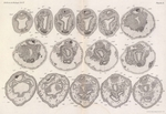 Van Beneden, E.; Julin, Ch. (1889). Recherches sur la morphologie des Tuniciers. I. Vanderpoorten: Gent. 1-240, 14 plates pp.