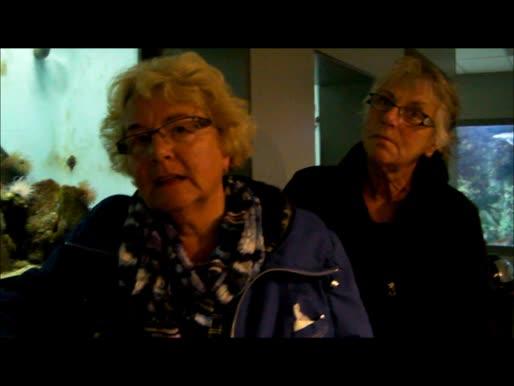 Testimonies from EU citizens