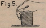 De Borger (1901, fig. 05)