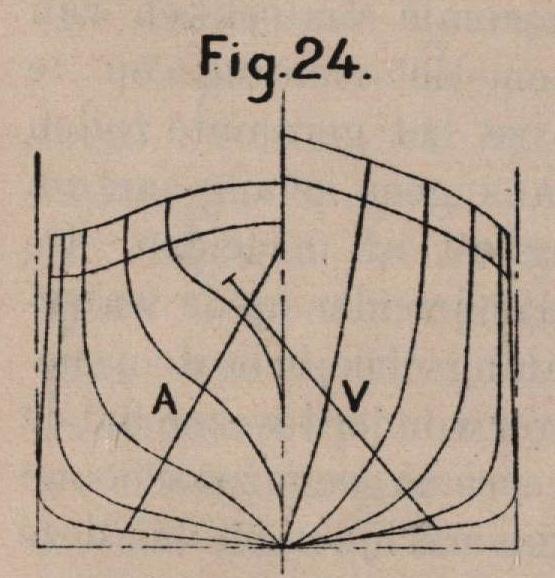 De Borger (1901, fig. 24)