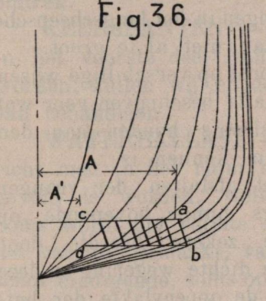 De Borger (1901, fig. 36)