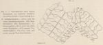 &lt;B&gt;Ludwig, H.&lt;/B&gt; (1903). Zoologie: Seesterne. <i>Résultats du Voyage du S.Y. <i>Belgica</i> en 1897-1898-1899 sous le commandement de A. de Gerlache de Gomery: Rapports Scientifiques (1901-1913)</i>. Buschmann: Anvers, Belgium. 1-72 pp.