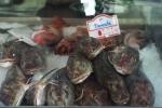 Seafood in de wereld