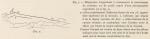 &lt;B&gt;Racovitza, E.G.&lt;/B&gt; (1903). Zoologie: Cétacés. <i>Résultats du Voyage du S.Y. <i>Belgica</i> en 1897-1898-1899 sous le commandement de A. de Gerlache de Gomery: Rapports Scientifiques (1901-1913)</i>. Buschmann: Anvers, Belgium. 140, IV plates pp.