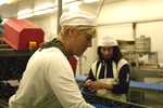 Fish processing industry