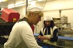 Visverwerkende industrie