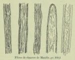 Huwart, J. (1905). Le tannage des filets de pêche Trav. Stat. Rech. Relat. Pêche Marit. Ostende 2: 3-33