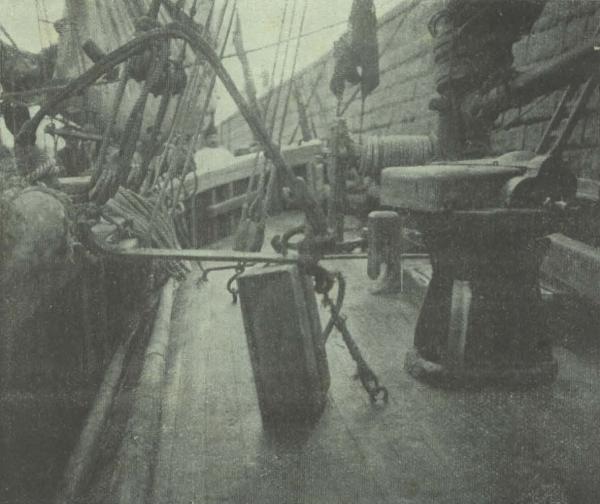 Gilson (1911, fig. 05)