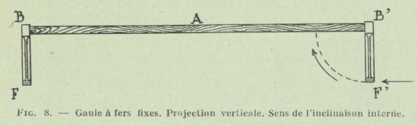 Gilson (1911, fig. 08)