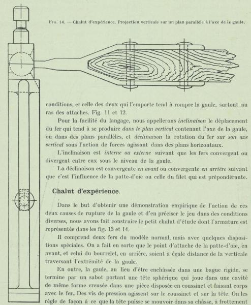 Gilson (1911, fig. 14)