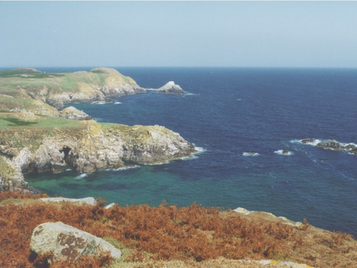The west side of the Great Saltee.