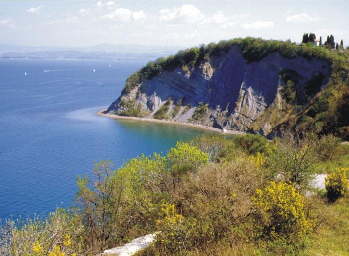 Nature Reserve Strunjan, Slovenia.