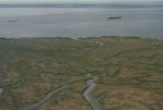 Saeftinghe: one of Europe's largest saltmarshes in the Westerschelde.