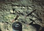 Porcupine Abyssal Plain