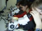 laboratorium: soorten determineren