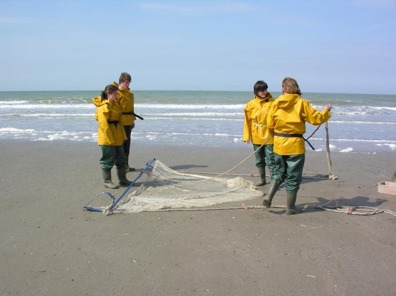 strandkruien: voorbereiding