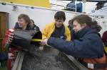2006.04.18-21 Expeditie zeeleeuw 2006