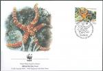 Echinaster callosus