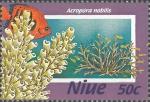 Acropora nobilis