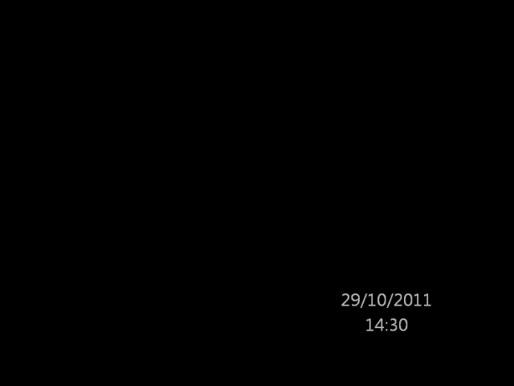 School witsnuitdolfijnen 29/10/2011