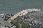 Haroblokken op nieuwe westdam Oostende