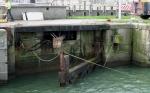 Sluisdeur visserijdok verwijderd