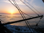 Boomkor bij zonsondergang
