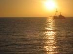 Kustvisser bij zonsondergang