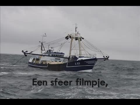 Z.53 Van Eyck
