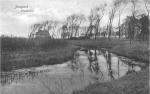 Nieuport - L'huitrière