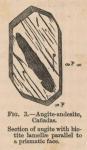 Renard (1888, fig. 03)