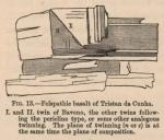 Renard (1888, fig. 13)