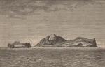 Renard (1888, pl. 08)
