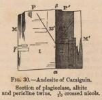 Renard (1888, fig. 30)