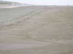 kleiafzetting op het strand, author: Nuyttens, Filip