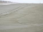 kleiafzetting op het strand