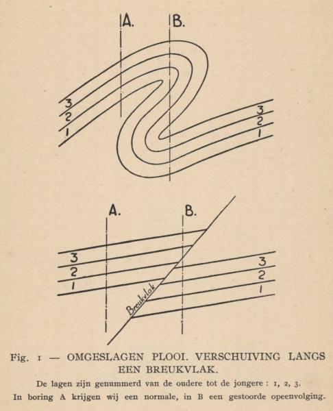 De Langhe (1939, fig. 1)