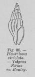 Eben (1884, figuur 38)