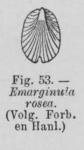 Eben (1884, figuur 53)