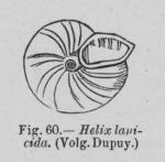 Eben (1884, figuur 60)