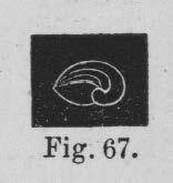 Eben (1884, figuur 67)