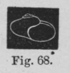 Eben (1884, figuur 68)