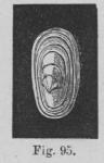 Eben (1884, figuur 95)