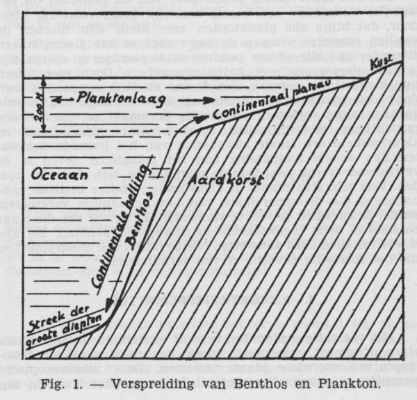 Gilis (1942, figuur 1)