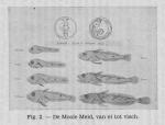 Gilis, Ch. (1940). Korte inhoud van de wetenschappelijke voordrachten gegeven door den heer Charles Gilis, Laboratoriumleider van het Zeewetenschappelijk Instituut te Oostende aan de visschers en de leerlingen van de visschersscholen van Blankenber